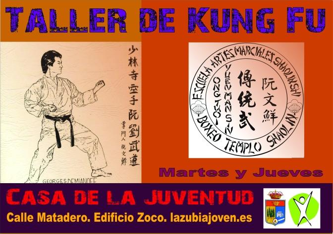 Taller de Kung Fu